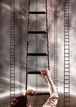 ladder 8